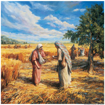 Book of Ruth, The Book of Ruth in the Bible Study, Commentary, Online